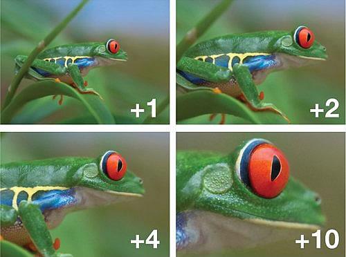 Exemplo de ampliação dos filtros Close UP