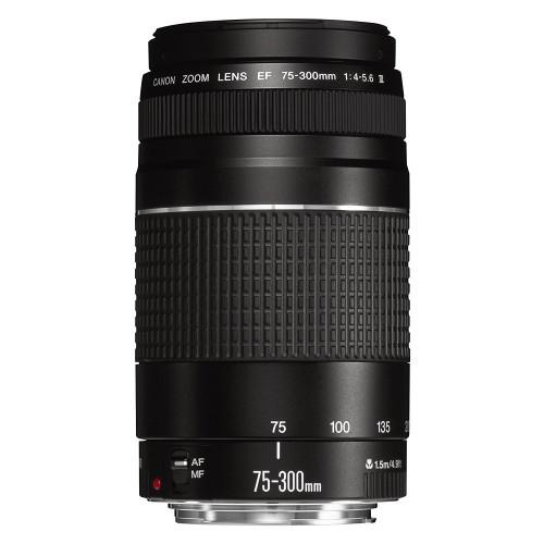 Lente Canon 75-300 STM