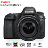 Canon 6D Mark ii 24-105mm IS STM