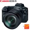 Canon R camera Mirrorles com lente RF 24-105 kit bokeh
